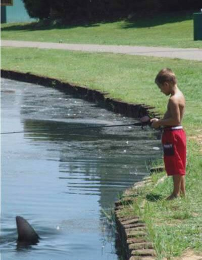 Catch a big one - Funny Pictures and Images