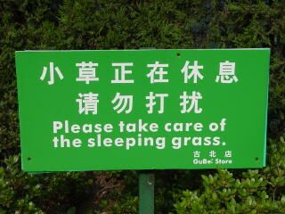 Sleeping grass - Funny Pictures and Images