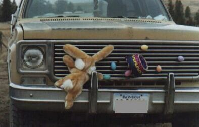 Car Loving Teddy - Funny Pictures and Images