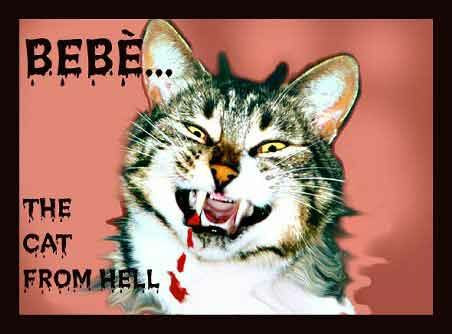 The Cat From Hell - Funny Pictures and Images