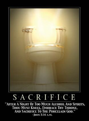Sacrifice to the porcelain god - Funny Pictures and Images