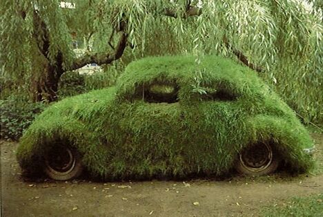 Chia Car - Funny Pictures and Images