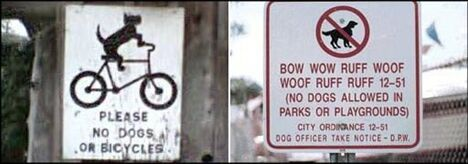 A Ruff Warning - Funny Pictures and Images