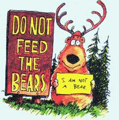 Do not feed the bears - Funny Pictures and Images