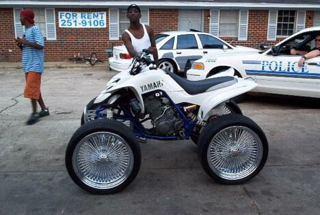 4-Wheel Bike - Funny Pictures and Images