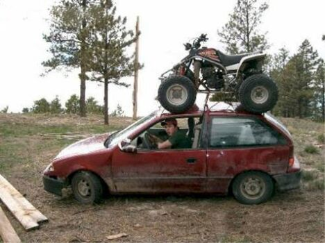 Need a lift? - Funny Pictures and Images
