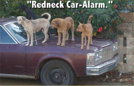 Redneck Car Alarm - Funny Pictures and Images