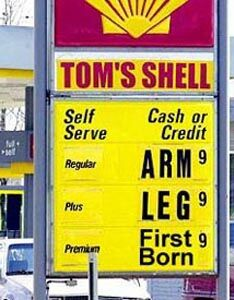 Tom's Shell - Funny Pictures and Images